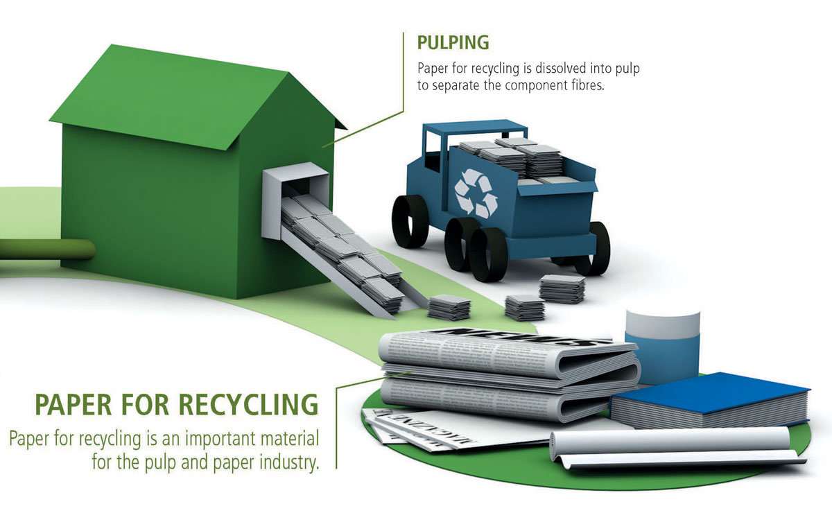 Infographic - Paper For Recycling